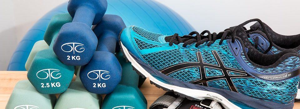 Менеджмент физкультурно-спортивных организаций
