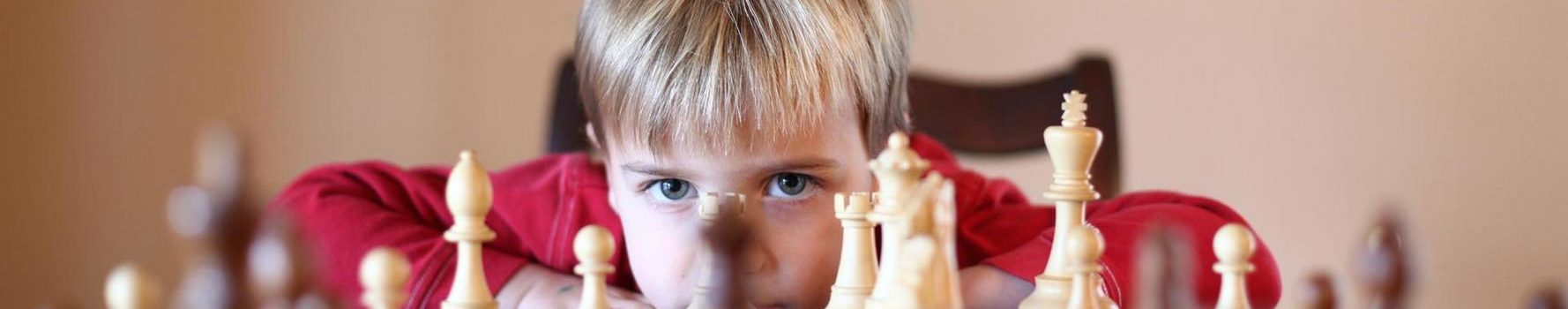 Методика преподавания курса «Шахматы в школе» в условиях реализации ФГОС