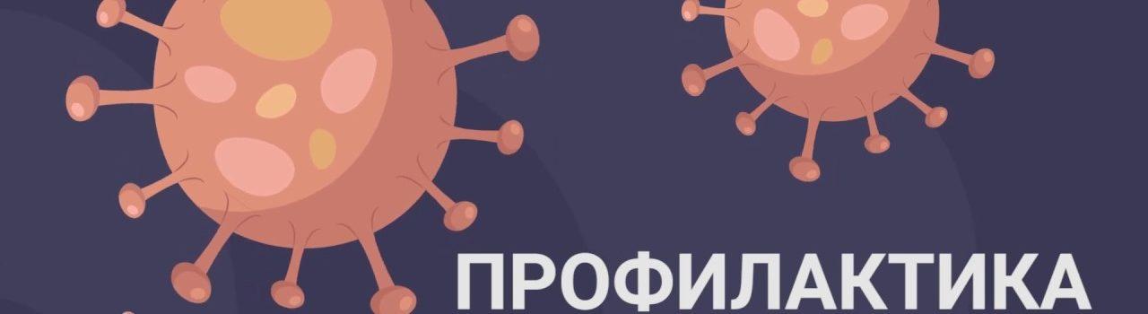 Профилактика коронавируса, гриппа и других острых респираторных вирусных инфекций в общеобразовательных организациях